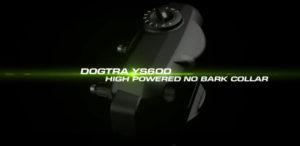 YS600